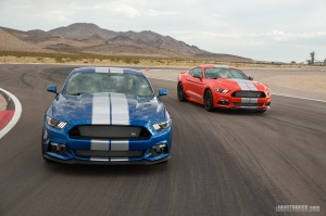 2017 Shelby GTE Mustangs on Track